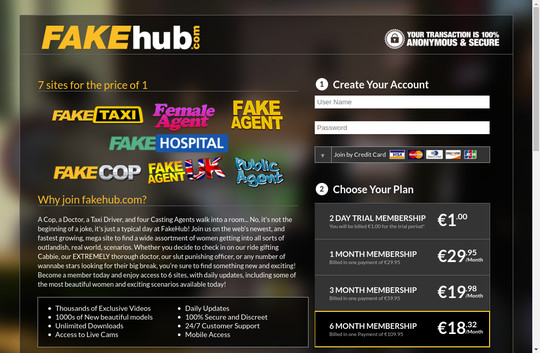 Fake Hub tested login