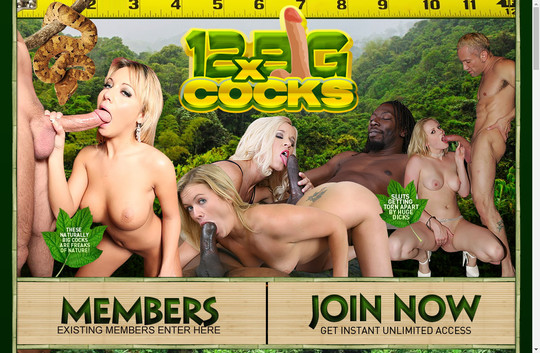 12x Big Cocks free login
