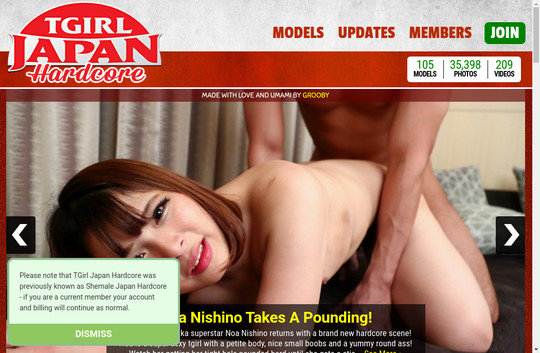 Tgirljapanhardcore access login