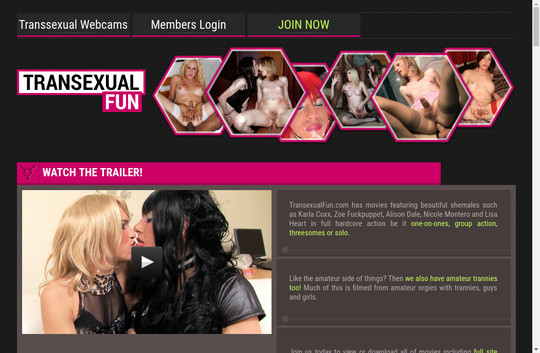 Transexual Fun new passes